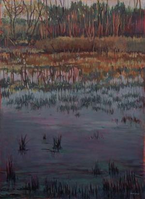 Galien River by Nina Weiss