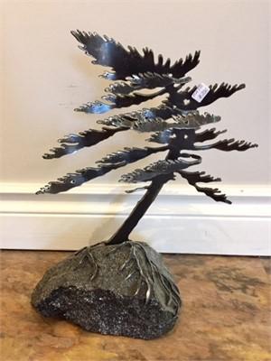 Windswept Pine, MA000770