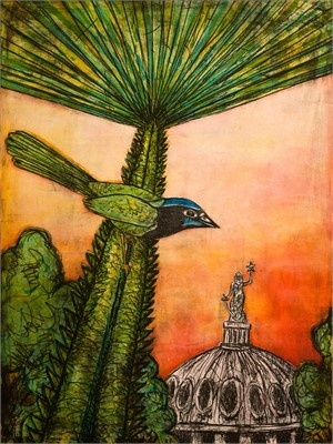 Texas Green Jay (1/24), 2014