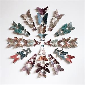Butterflies, 2018