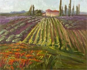 Tuscany, The Contessa's Farm