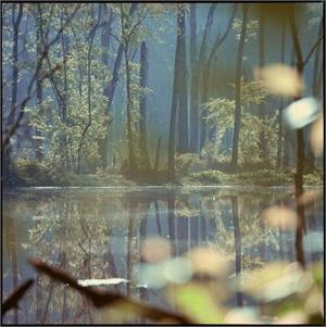 Across the Lake by Kathryn Kolb