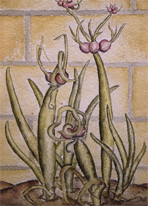 In Bloom, c. 1930s