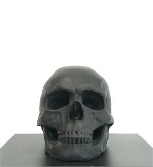 Human Skull I