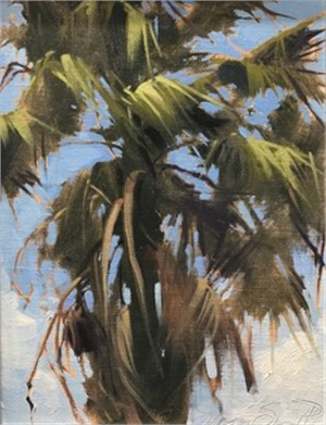 Washingtonia Palm, 2018