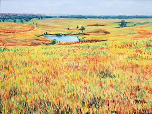 Hidden Colors in Tallgrass Prairie by C.T. (Fred) Hsia