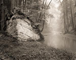 (#281) Ark, Cedar Falls (5/34) by Frank Hunter