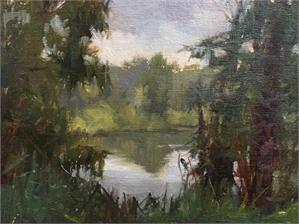 Farm Pond Study