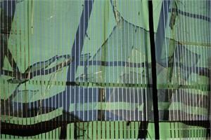 Greenhouse #7 (1/20)