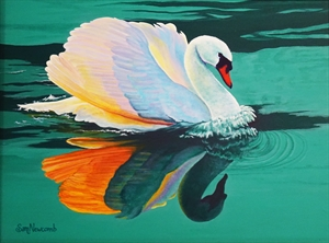 Broadmoore Swans by Sam Newcomb