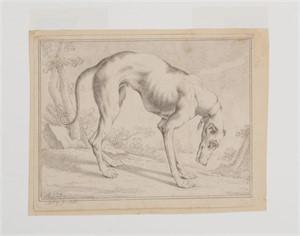 A HOUND, German, 1800