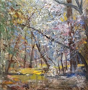 Creek Study