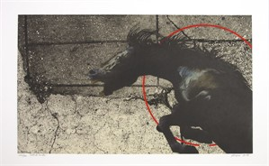 Native Rival (Target Series) (223/300), 1980