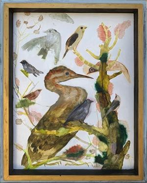 Bird Series , 2019