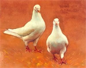 White Dove 48