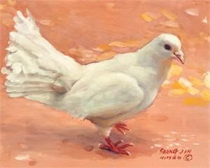 White Dove 37