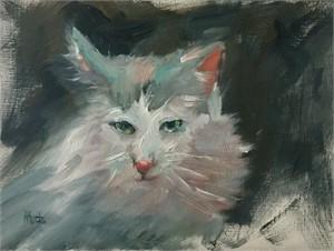 Feline, 2018