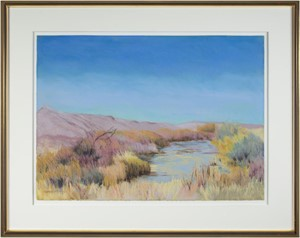 Bosque del Apache, NM, 1995-96