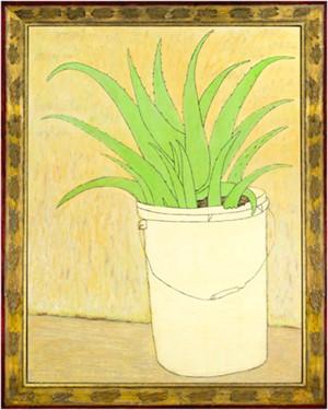 Aloe, 2011