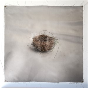 Untitled Nests #3 (1/20), 2018