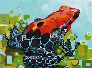 Poison Dart Frog, 2014