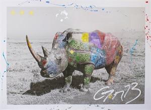 Rhinoceros (/12), 2014