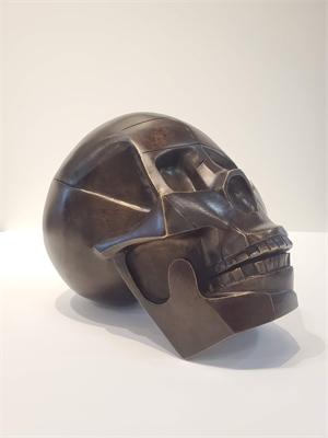 Skull, 2019