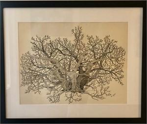 Africatown Fig Tree East, 1967