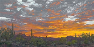 Looking Over At Tucson Mountains, 2020