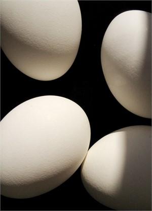 Four Eggs 7114