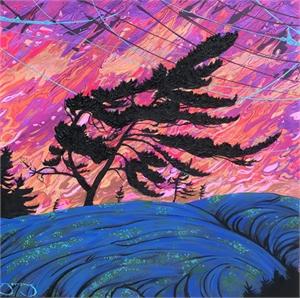 Killbear Pine 186353, 2019