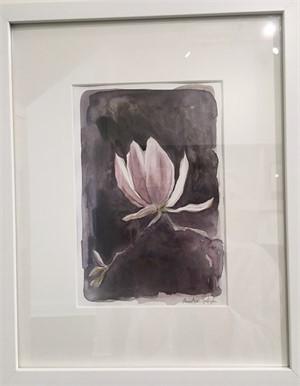 Tulip Magnolia Bloom, 2019