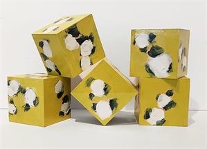 Cotton Boxes