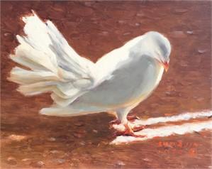 White Dove 32