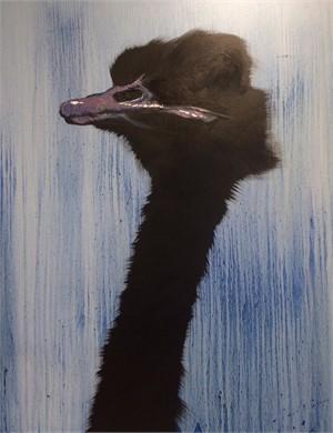 Blue Wash Ostrich