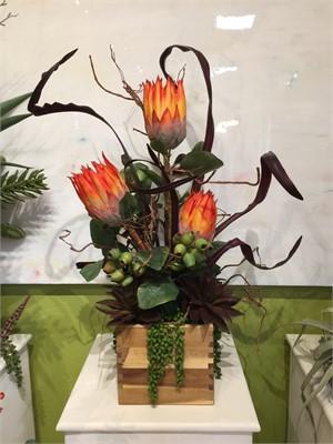 Firewater - Protea,Aeonium.Seed Pods, Cymbidum Foliage #6, 2019