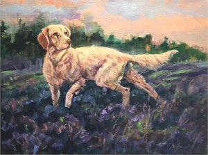 Setter In Heather