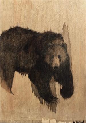 Black Bear, 2019