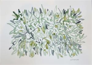 Study for Bromeliads II Green