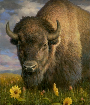 Bison with Sunflowers