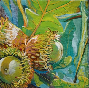 Acorns by Kathy Hisel
