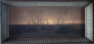 Dead  trees,  South  Australia    (2/20), 2018