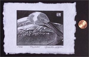 Pelican (14/40)
