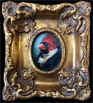 Gentleman Cardinal, 2019