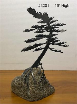 1-Windswept Pine #3201