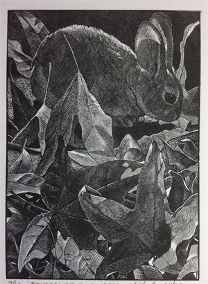 Beneath the Sycamore - Wood Engraving (11/100)