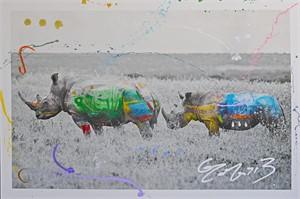 Rhino Duet (1/9), 2014