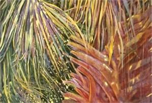 Layered Palm