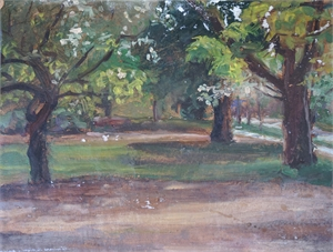 Park Landscape, 2019