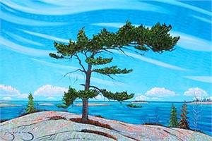 Hidden Pine 185598, 2019